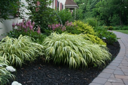 Create Landscaping Features with Bright Colors Year Round