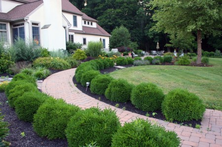 Traditional Boxwood Hedge Landscaper in Berks County, PA