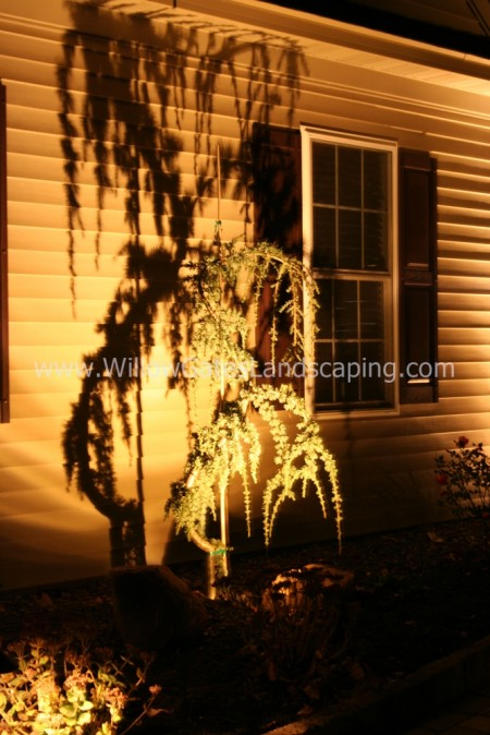 Landscape Lighting Technique  | Landscape Lighting Designers