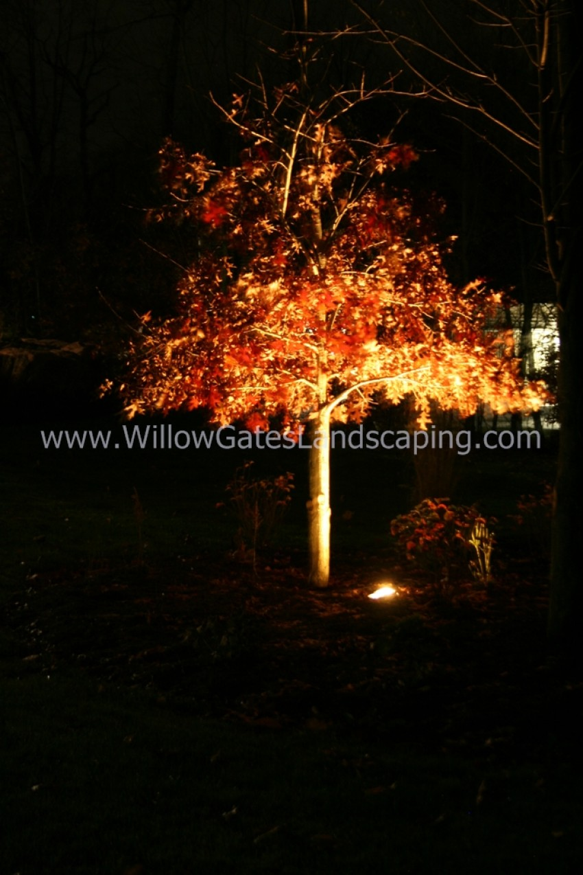 Contractor for Outdoor Lighting for my Landscape in Quakertown