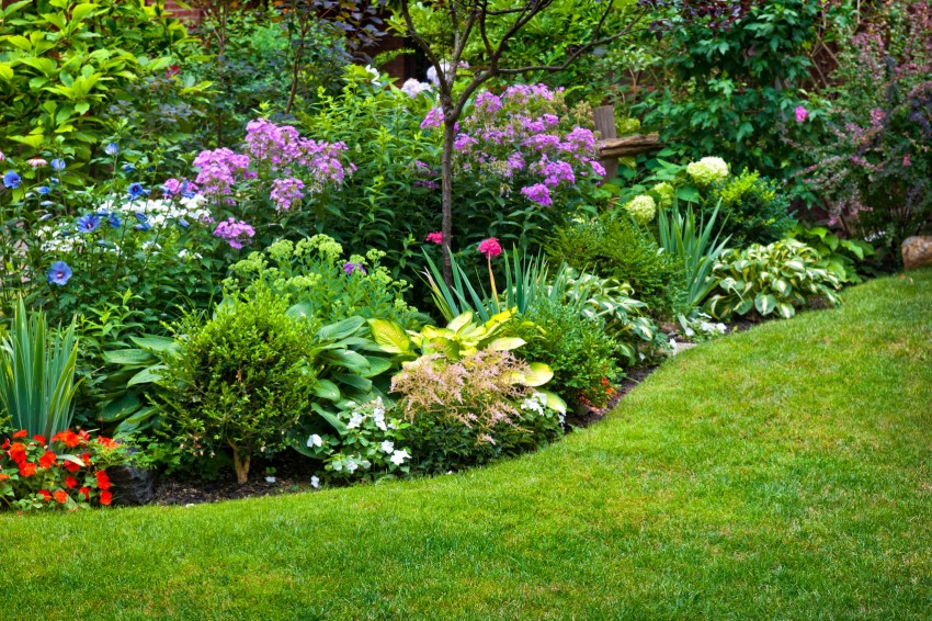 adding perennials to your spring landscapes